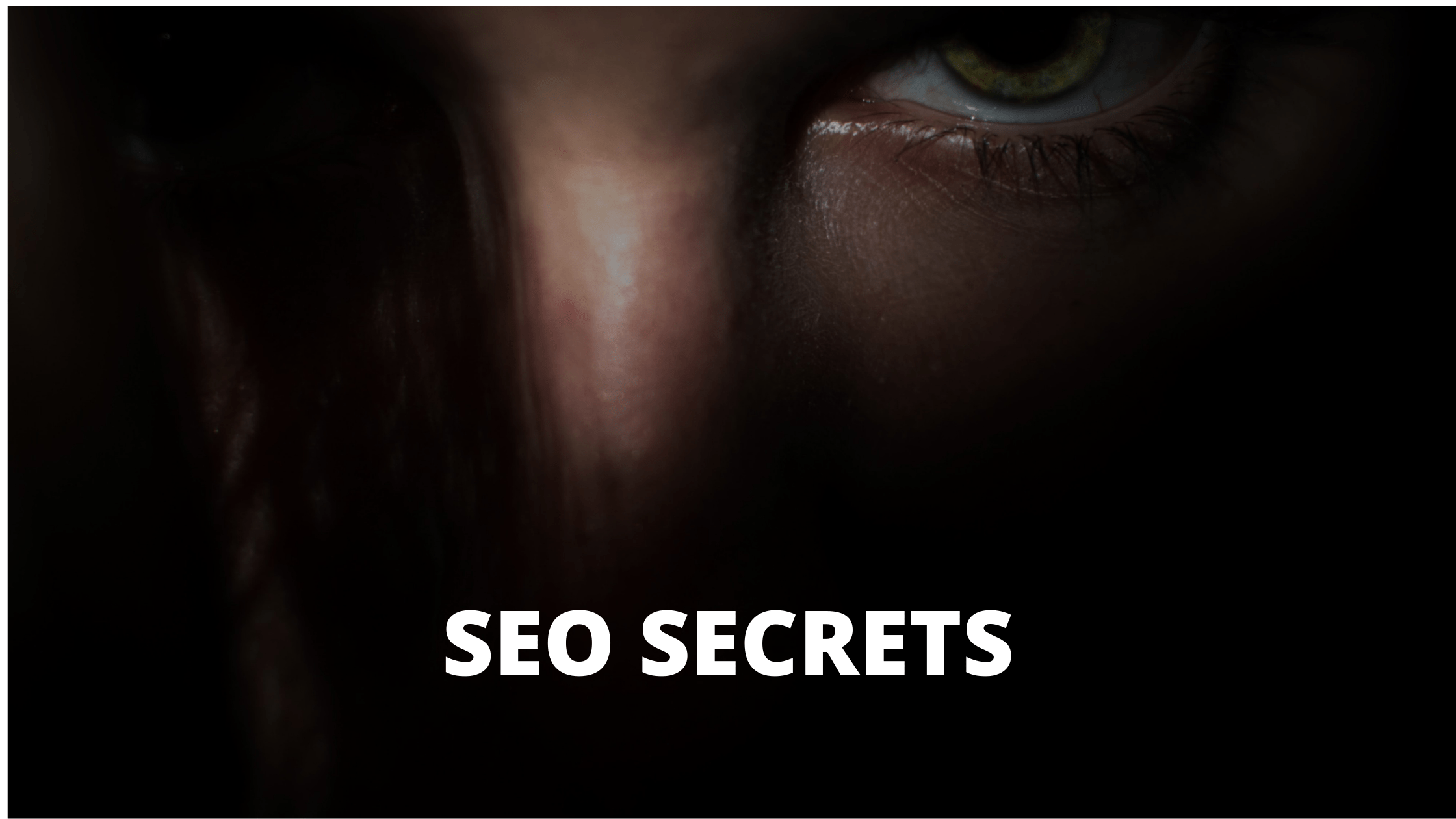 SEO Techniques That Can Be Used in Any Market